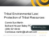Indian Environmental Law Presentation
