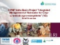 Integrated Management of Rainwater for Crop-Livestock Agro-Ecosystems in the Volta River Basin