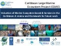 Valuation of Marine Ecosystem Goods & Services in the Caribbean: A review and framework for future work