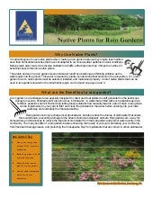 VA: Native Plants for Rain Gardens ...