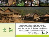 Landscape complexity and dietary diversity: Linking deforestation and agrarian change to dietary transitions