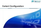 SAP SD Variant configuration-training-document 2