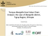 Tanqua-Abergelle Goat Value Chain A...