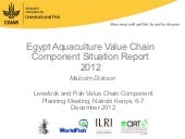 Egypt Aquaculture Value Chain Compo...