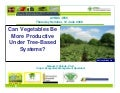 Vegetables in agroforestry systems