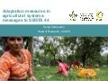 Adaptation measures in agricultural systems: Messages to SBSTA 44