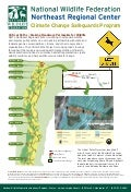 Vermont Critical Paths Project - Providing Safe Corridors for Wildlife