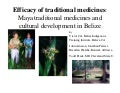 Efficacy of traditional medicines: Maya traditional medicines and cultural development in Belize