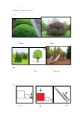 "Vocabulary in pictures "" plants"""