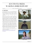 South Florida Wading Bird Report 2008