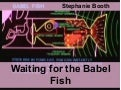 Waiting for the Babel Fish: Languages and Multilingualism