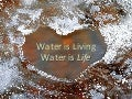 Healthy Living Water is Oxygenated, Hexagonal and Alkaline