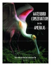 Waterbird Conservation for the Amer...