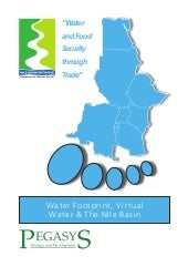 Water footprint virtual water abstr...