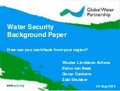 Water security background paper by ...