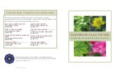 Waterwise Plant Guide: Beautiful Pl...