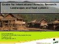 Centre for International Forestry Research: Landscapes and food systems