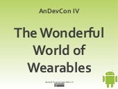 The Wonderful World of Wearables