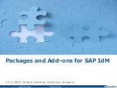 Packages and Add-ons for SAP IdM