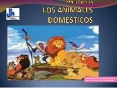 Webquest animales domesticos
