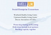 Well uk social enterprise consortium   jaine keable