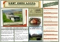 West Cork Local Newsletter