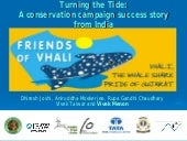 Whale Shark Ppt 10 Yrs