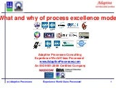 What and why of process improvement standards