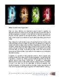 Detail Guide to Electronic Cigarettes