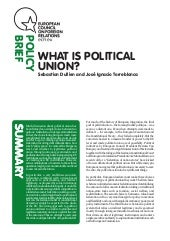 European Union: What is Political U...
