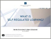 What is srl_06112015_slideshare