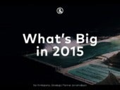 What's Big in 2015