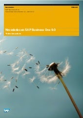 Whats new in SAP Business One 9.0. ...