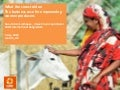 What the cows told us: the business case for empowering women farmers