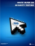 White paper security_testing