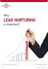 Why Lead Nurturing is important?