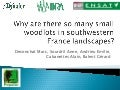 Why are there so many small woodlots in southwestern France landscapes