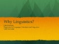 Why linguistics