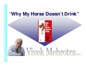 Why My Horse Doesnt Drink