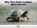 Why Slow Sales Leaders Won't Survive