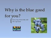Why the blue is good for you