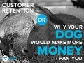 Customer Retention: Why Your Dog Would Make More Money Than You
