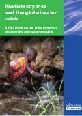 Biodiversity loss and the global water crisis - A fact book on the links between biodiversity and water security