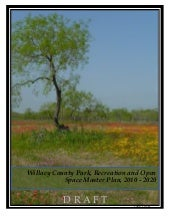 Willacy count master plan combined