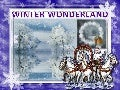 Winter wonderland1