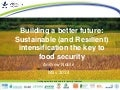 Building a better future: Sustainable (and Resilient) intensification the key to food security