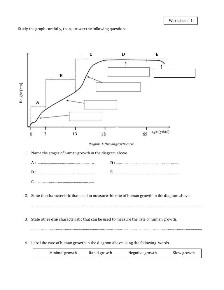 Worksheets Population Growth Worksheet worksheet 1 growth