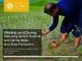 Wetting and Drying: Reducing GHG Emissions and Saving Water from Rice Production