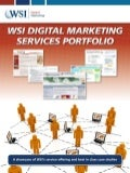WSI Onlinebiz Digital Matrketing services portfolio