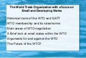 Wto and implications for small and ...